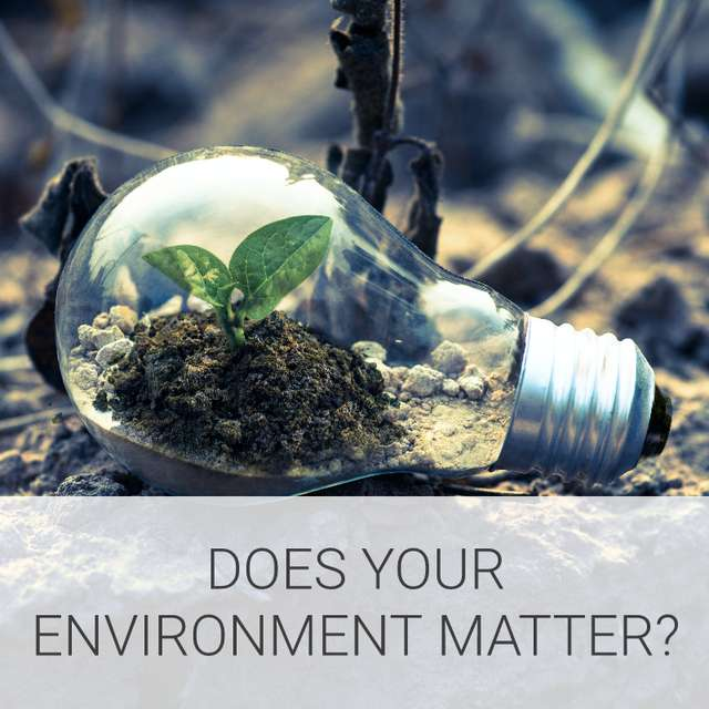 Does your environment matter?